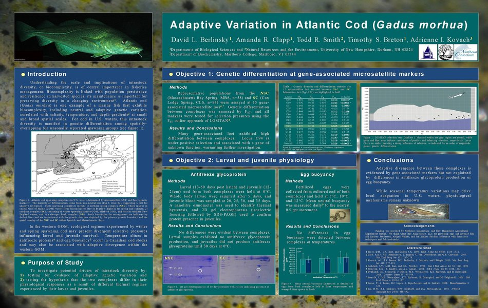 Adaptive Variation In Cod by akovach