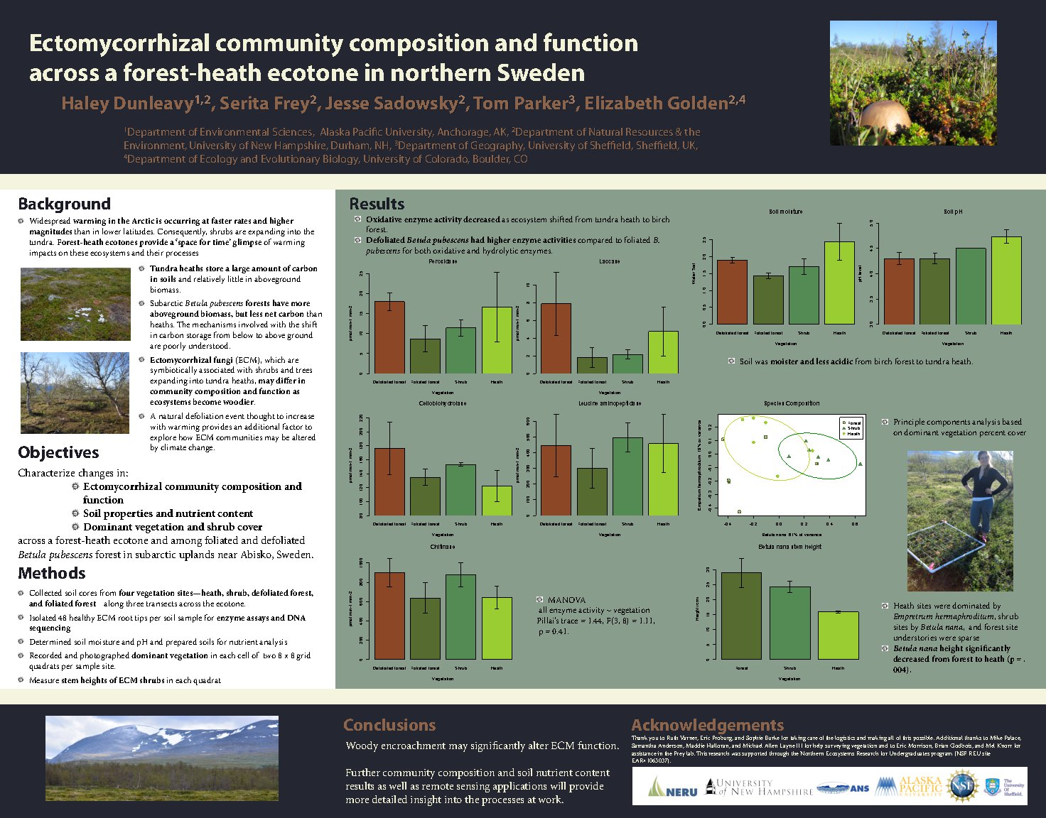 Ectomycorrhizal Community Composition And Function Across A Forest-Heath Ecotone In Northern Sweden by hdunleavy