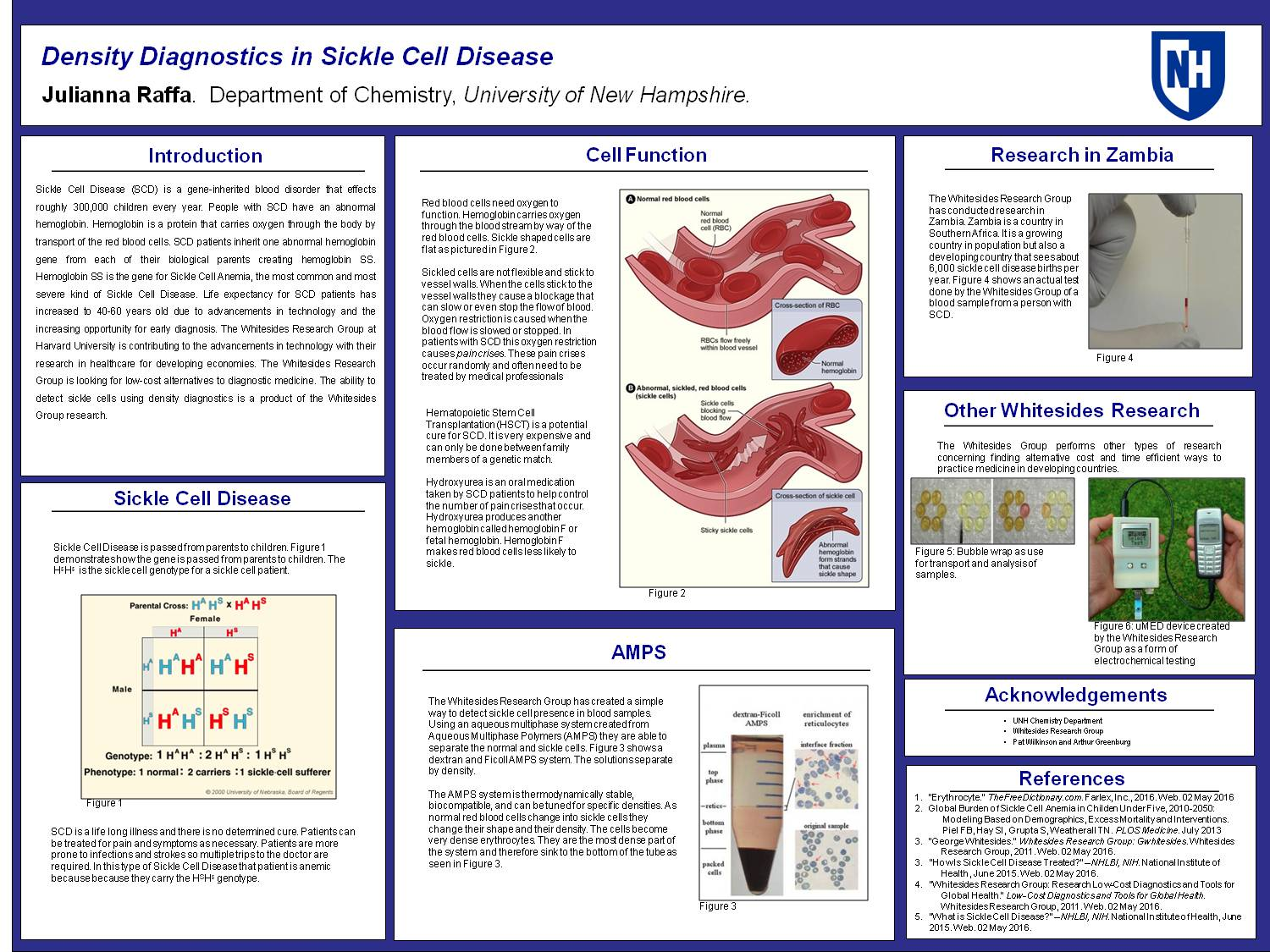 Density Diagnostics In Sickle Cell Disease by jdn87
