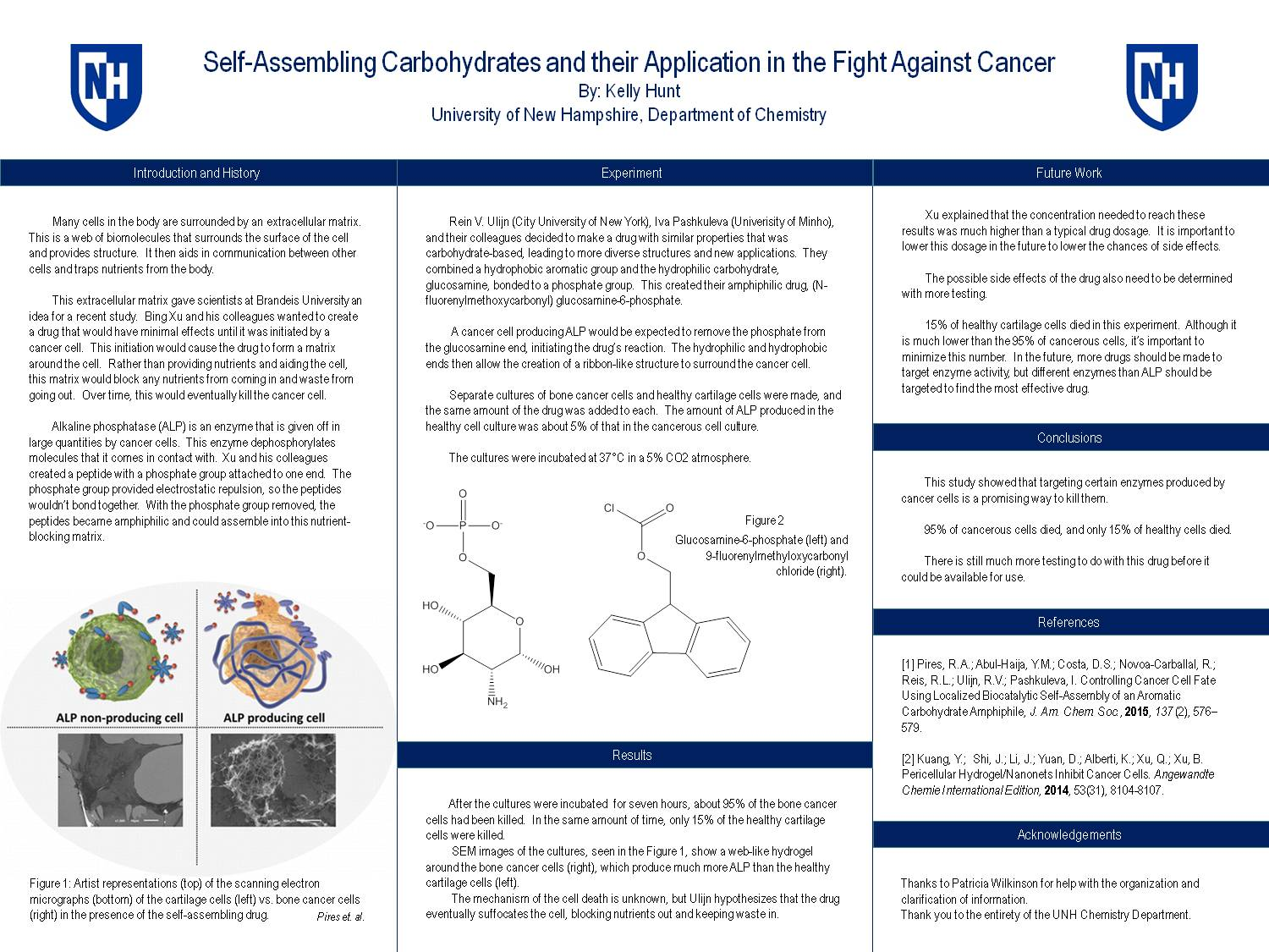 Self-Assembling Carbohydrates And Their Application In The Fight Against Cancer by kmy2576