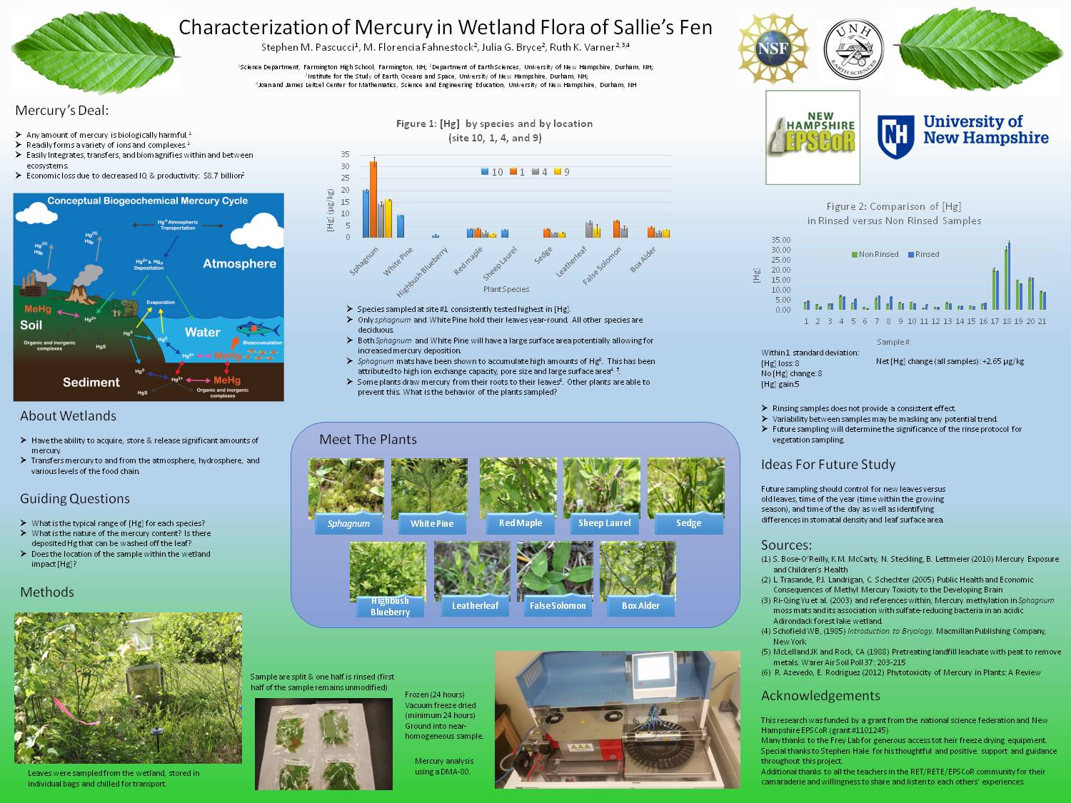 Characterization Of Mercury In Wetland Flora Of Sallie's Fen by StephenPascucci