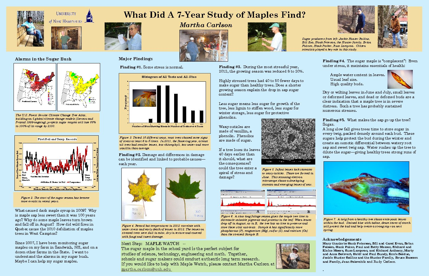 Findings Of A 7-Year Maple Study by mrg39