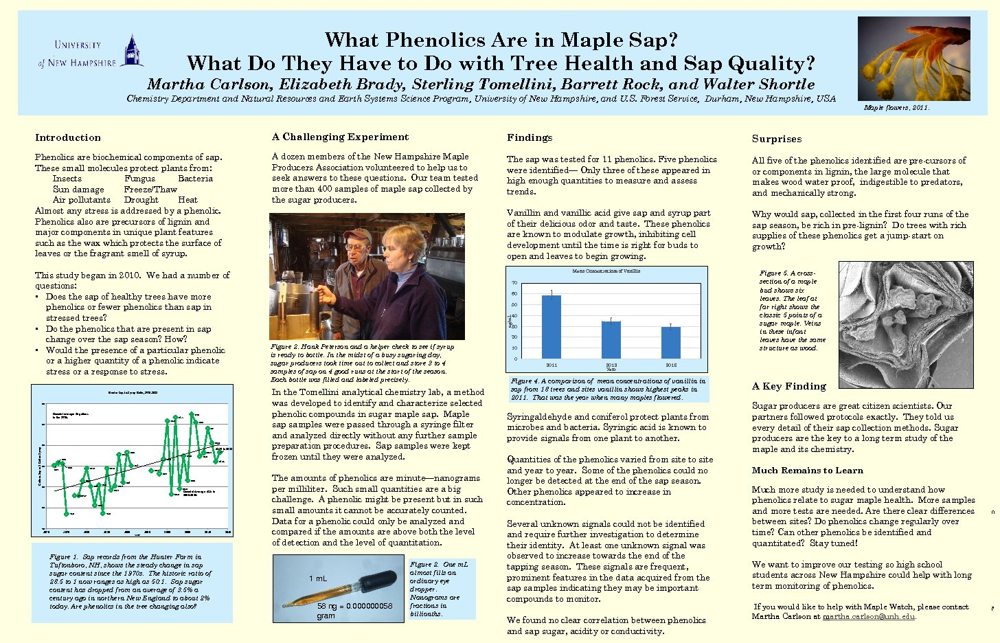 What Phenolics Are In Maple Sap? by mrg39