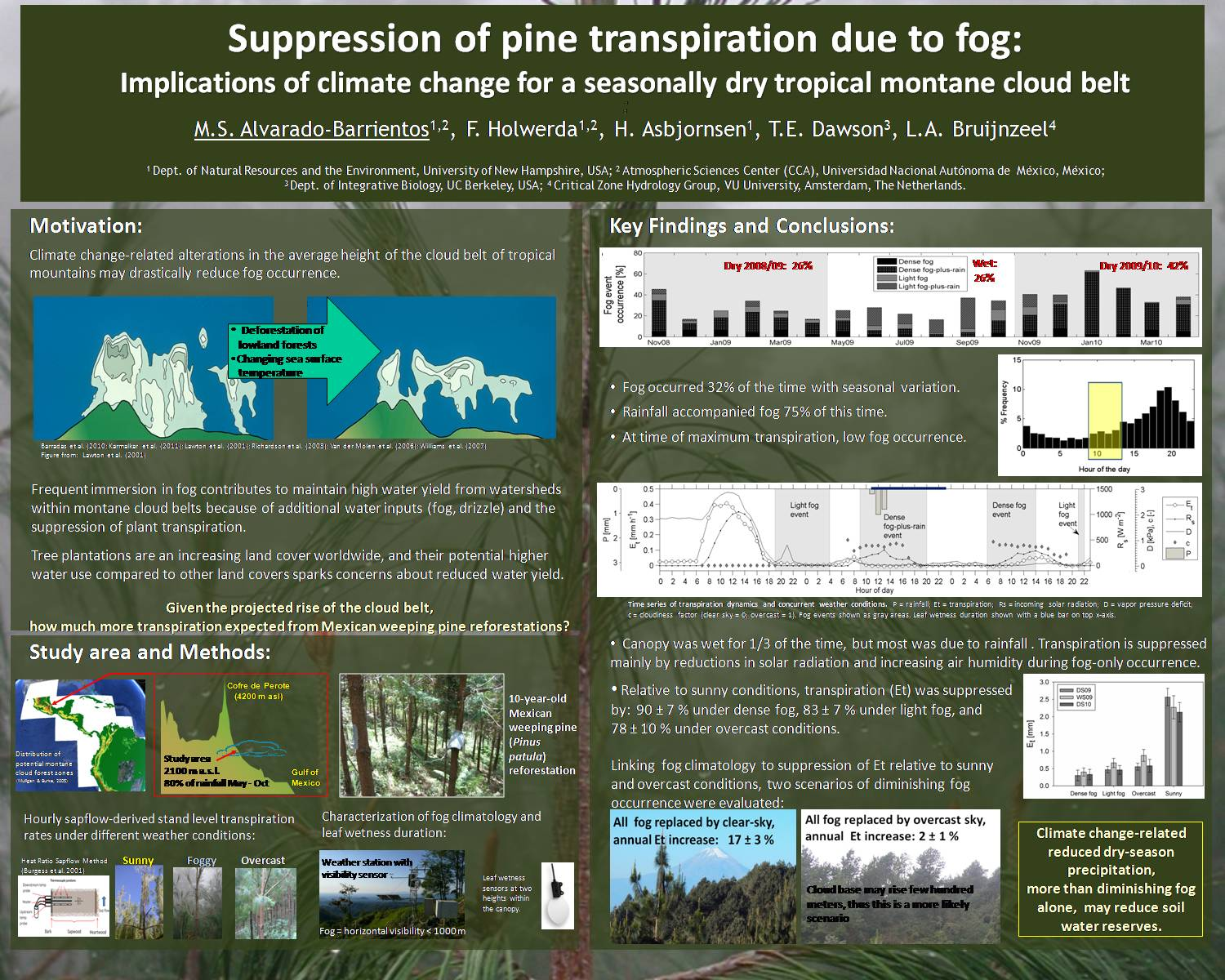 Suppression Of Pine Transpiration Due To Fog by msab