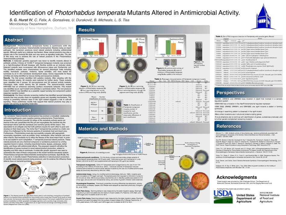 Identification Of Photorhabdus Temperata Mutants Altered In Antimicrobial Activity. by sgg26