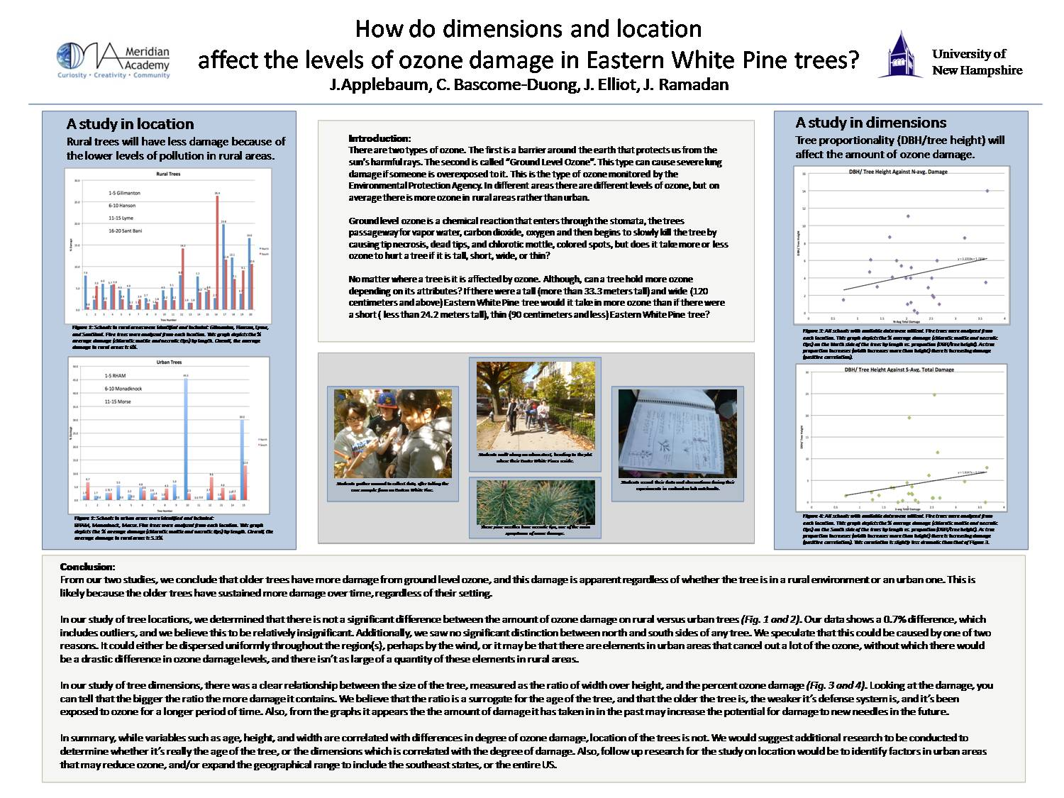 How Do Dimensions And Location Affect The Levels Of Ozone Damage In Eastern White Pine Trees? by skinkel