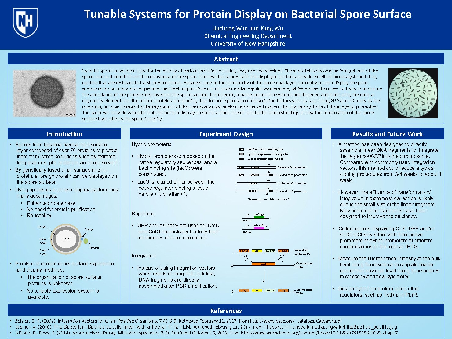 Tunable Systems For Protein Display On Bacterial Spore Surface by ssr