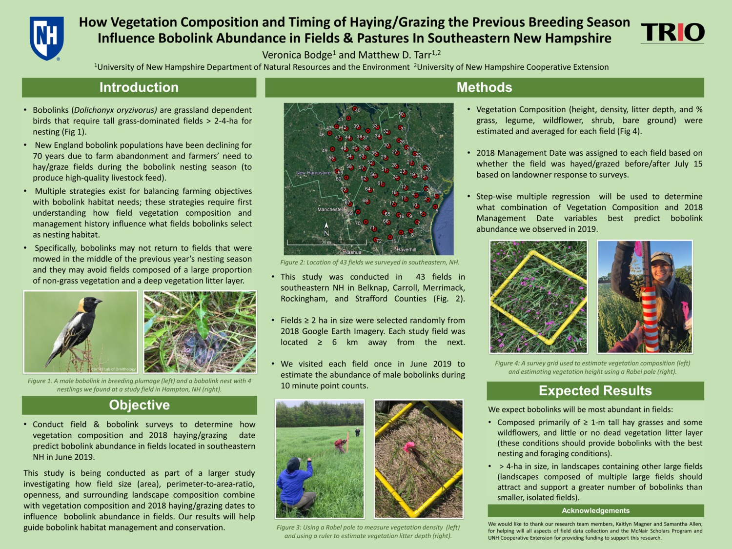 How Vegetation Composition And Timing Of Haying/Grazing The Previous Breeding Season Influence Bobolink Abundance In Fields & Pastures In Southeastern New Hampshire by vlb11