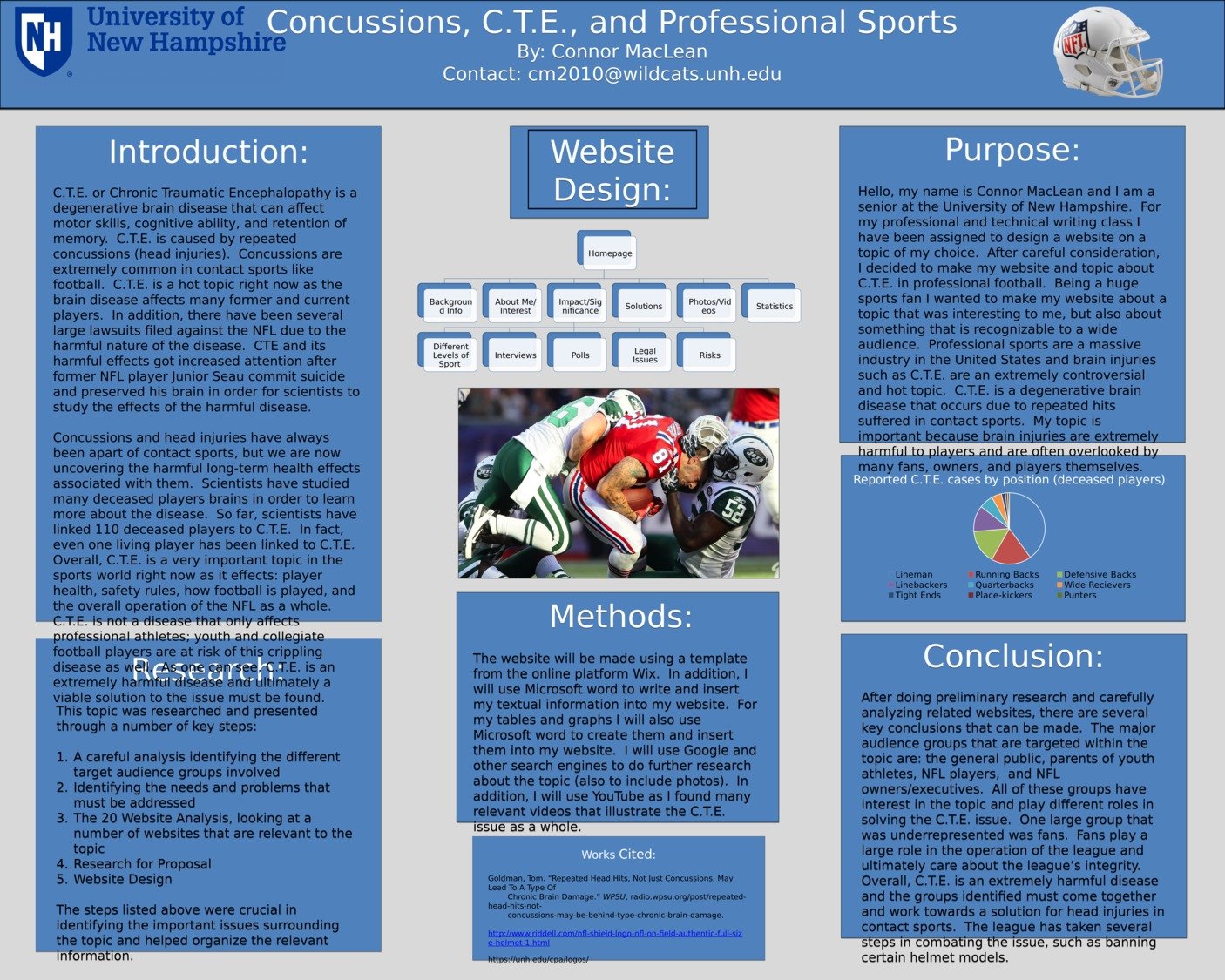 Concussions, C.T.E., And Professional Sports by cm2010