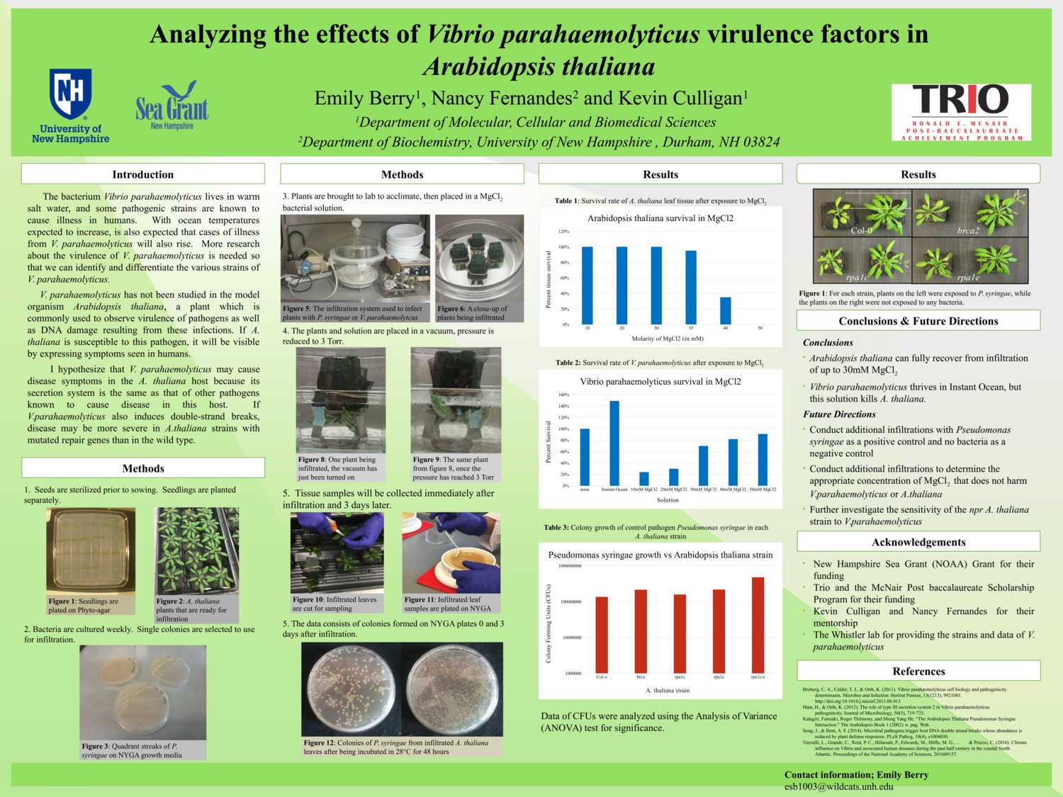 Analyzing The Effects Of Vibrio Parahaemolyticus Virulence Factors In Arabidopsis Thaliana by esb1003