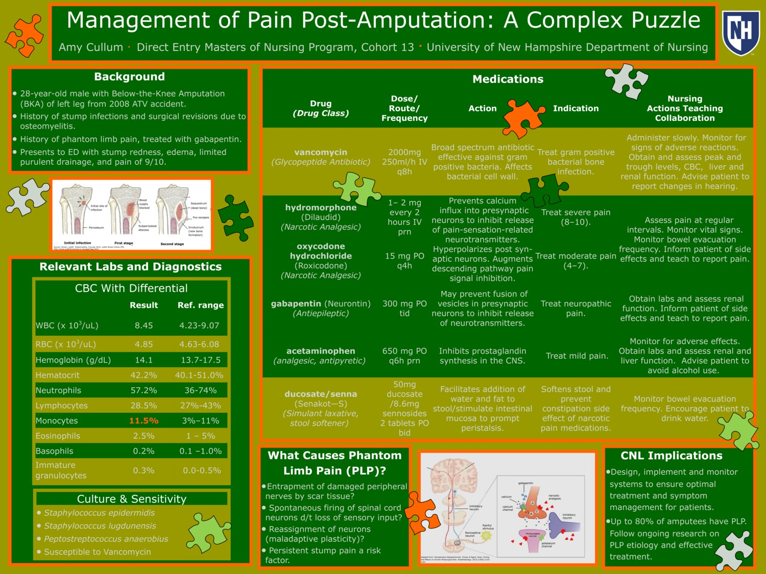 Management Of Pain Post-Amputation: A Complex Puzzle by acullum