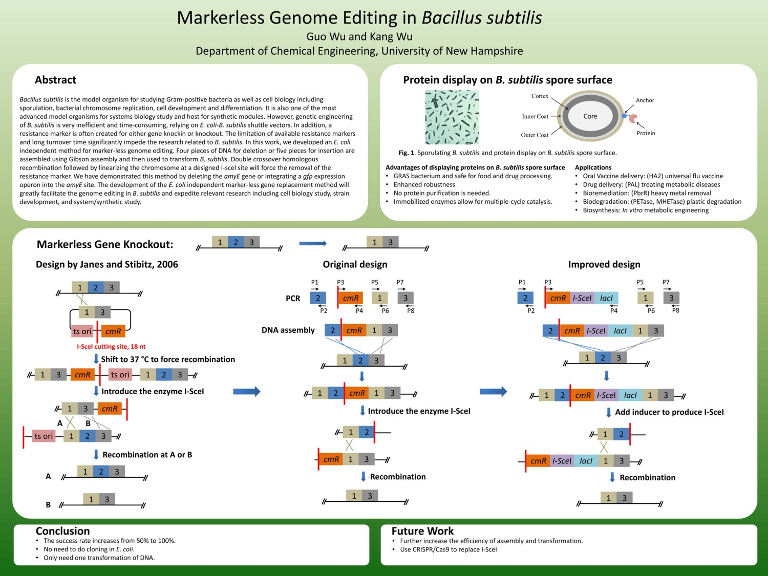 Markerless Genome Editing In Bacillus Subtilis by kangwu